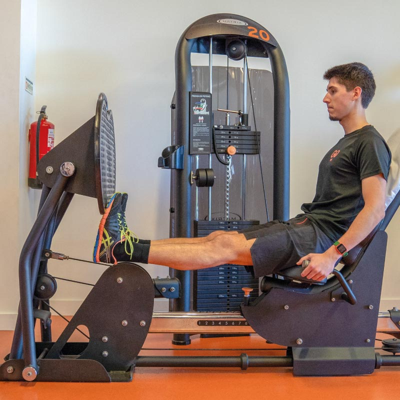 Leg Press Calf Extension